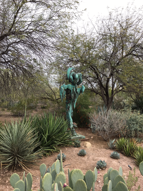 All of the Cacti and other Adventures in Arizona - Travels
